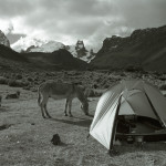 Pitching Camp in the Cordillera Huayhuash