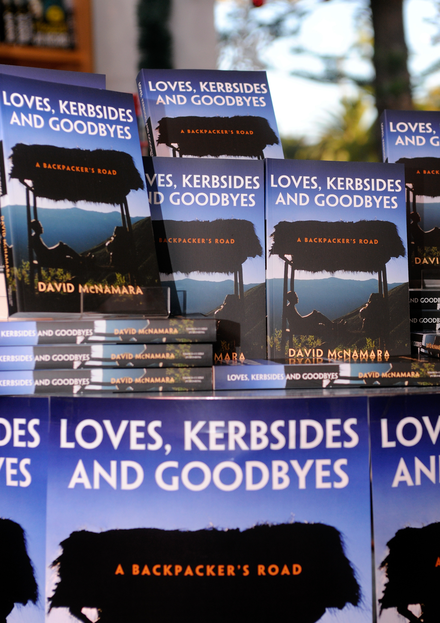 """Loves, Kerbsides & Goodbyes"" ondisplay at the Book Launch"