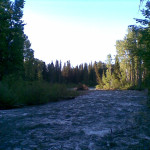 View From Night's Camp Along the Salmon River