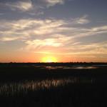 Talking Wetlands Conservation
