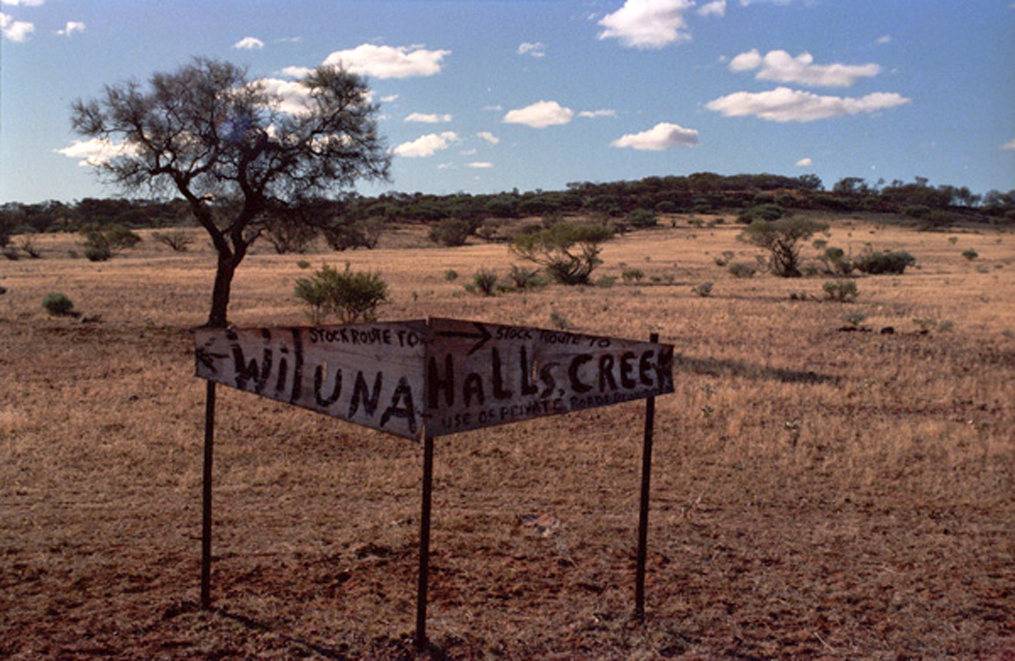 Wiluna to Halls Creek