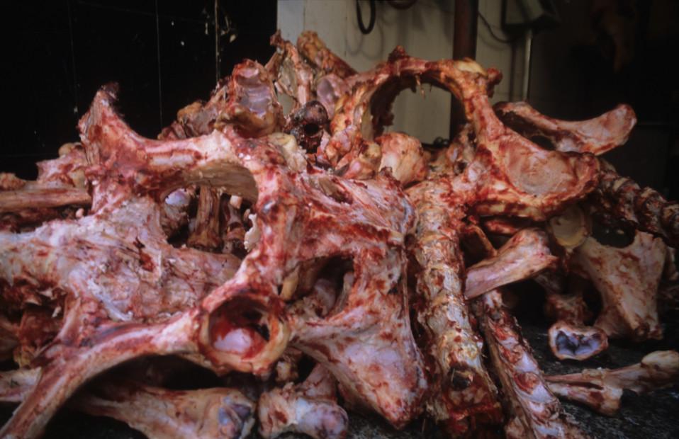 Meat Bones