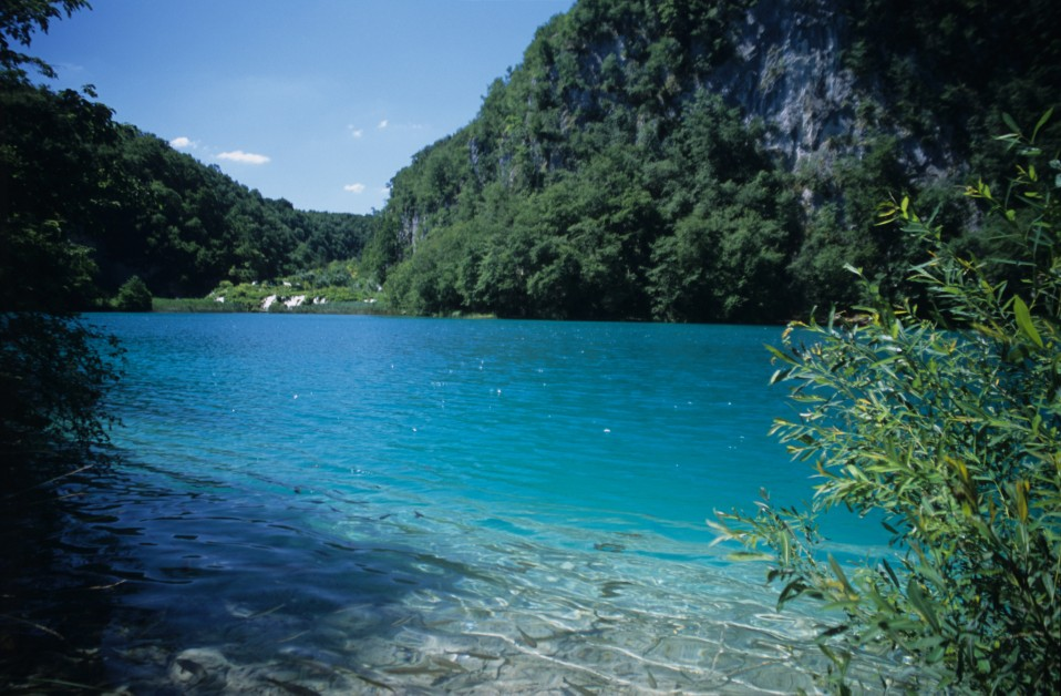Shores of Plitvice Lakes