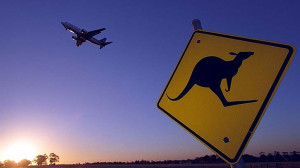 Kangaroo and Plane