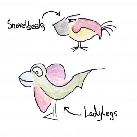 Shovelbeaks and Ladylegs