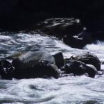 Water Flows Alongside El Chorro Inca Trail