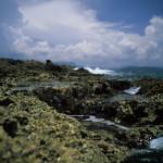 Baracoa Coastline