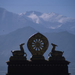 Lhasa Monestary Adoration