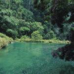 Idyllic Waters