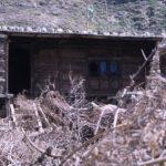 Tibetan Farmhouse