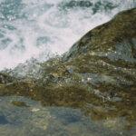 Yin Yang of Waterflow