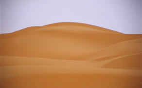 Edge of the Sahara