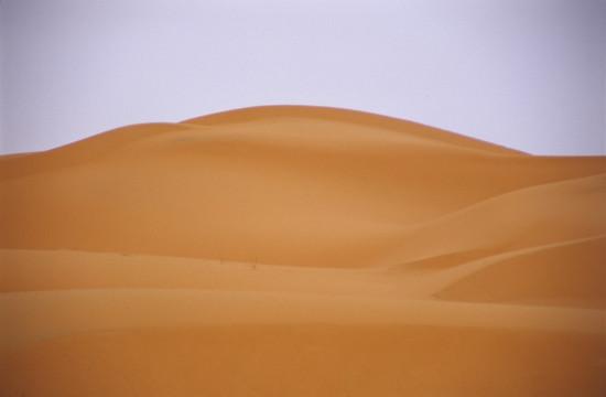 Edge of the Sahara