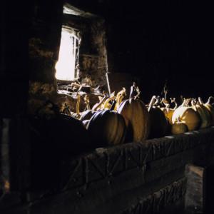 Pumpkins in Svaneti