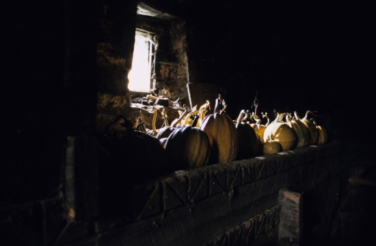 Pumpkins in Svaneti