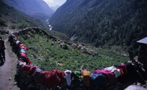 Laundry Day on the Langtank Trek