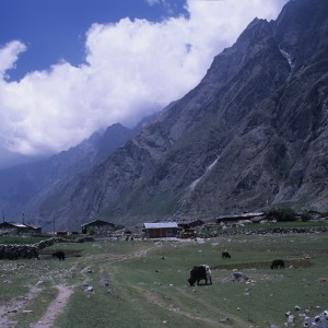 Langtang Valley Settlement