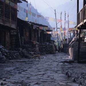 Street View of Langtang Village
