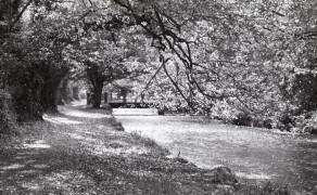 Deenaugh River