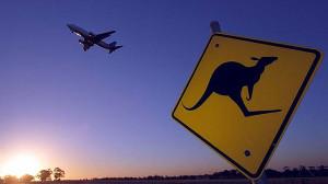 Kangaroo and Plane
